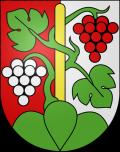Герб города Оберхофен