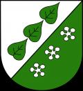 Герб города Сигулды, куда входит Турайдский замок