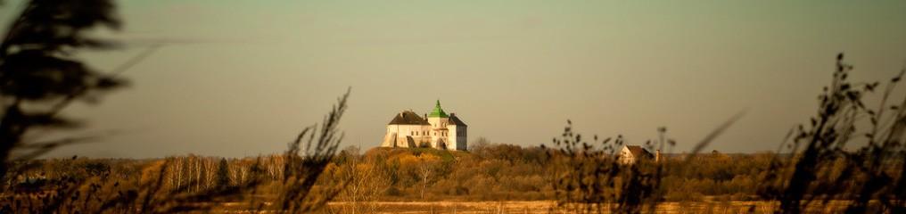 Олесский замок